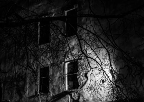 ночь в доме